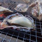 明日から開催のイベントも!牡蠣をたっぷり味わえるフェアが兵庫で目白押し!
